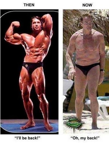 Pide Un Deseo Y Arruina Los Demas Schwarzenegger
